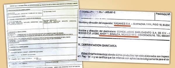 Embarque, en los papeles. La empresa Yaganes envió varios cargamentos desde Puerto Madryn a Sinaola en 2014.