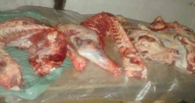 trevelin carne