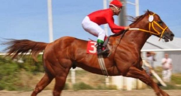 jockey-muere