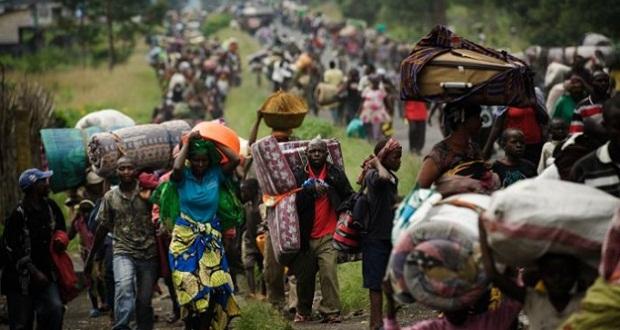 En Chad las migraciones en busca de comida y agua son diarias.