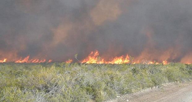 fuego-madryn